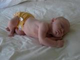 Diapering Newborns