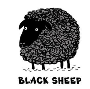 Black Sheep Wool Diapers
